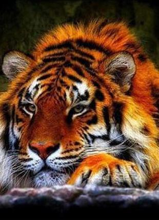 Набор для алмазной вышивки мозаики - Тигр