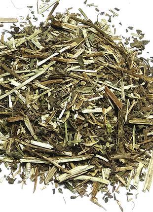 Иссоп лекарственный трава