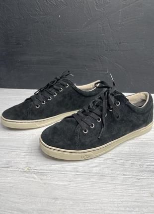 Мужские черные туфли мокасины ugg