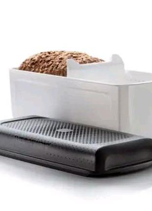 """""""Умная хлебница"""" малая Tupperware"""