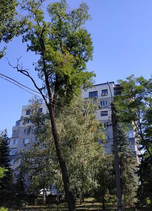 Сдам 3 комнатную квартиру, Нагорный район ул. С. Ефремова.