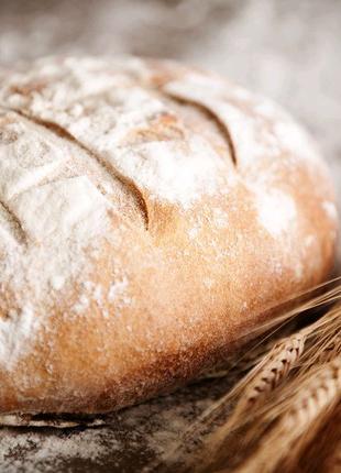 Требуются работники в Чехию на хлебзавод