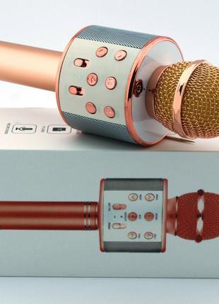 Портативный микрофон -караоке с динамиком Wster WS