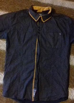 Рубашка с длинным /коротким рукавом в мелкий горох, синяя руба...