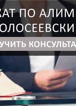 Адвокат по алиментам Голосеевский, помощь в оформлении алиментов