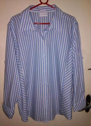 Натур.100%коттон,элегантная блуза-рубашка,бол20/22.рр.liz clai...