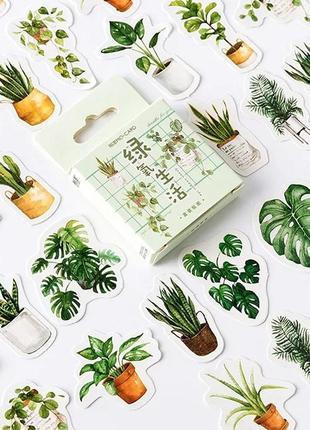 Набор наклеек, стикеров для скрапбукинга растения папоротник