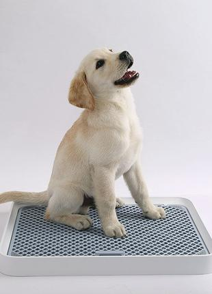 Туалет для собак Petkit Xiao Pei training dog toilet P930 лото...