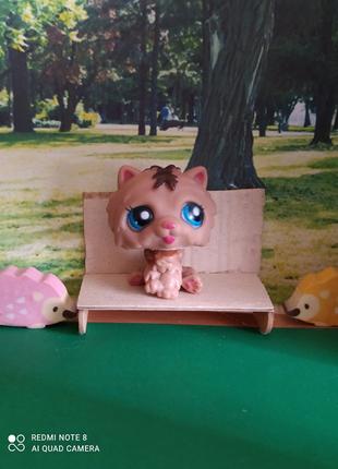 Игрушка Littlest pet shop котик