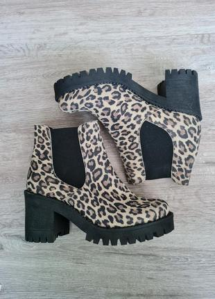 Леопардовые ботинки сапоги ботильены кожа andre