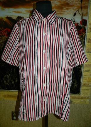 Блуза женская в Красную и черную полоску размер 52-54.
