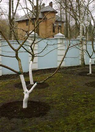 Услуги садовника, Ландшафтный дизайн, удаление деревьев, уборка