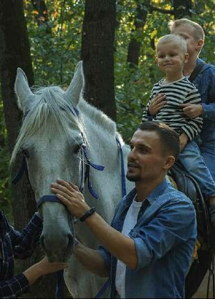Семейные фотосессии с лошадьми