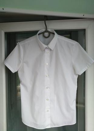 "Блузка-рубашка ""george"" р.146-152 девочке 11-12 лет, школьная ..."