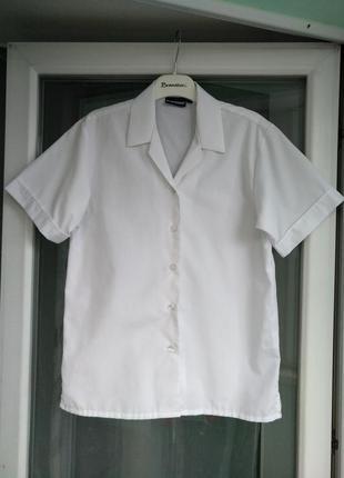 "Блузка-рубашка ""banner"" девочке 12-14 лет, р.164 (р. 32) школь..."