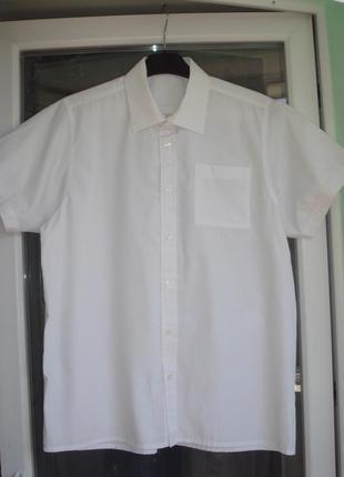 Шведка school life р.170-176 мальчику 16лет, рубашка белая