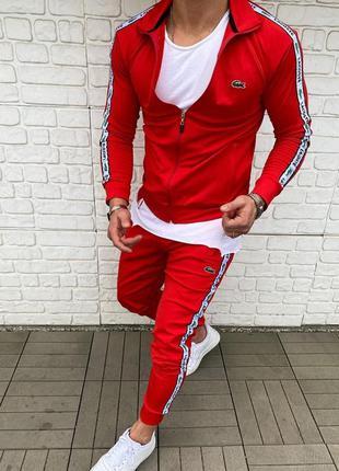 Мужской спортивный костюм lacoste