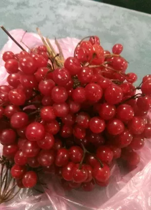 Продам ягоды калины