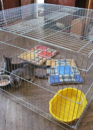 Вольер, манеж, клетка для собак, кошек, котят, птиц 100х100х60h