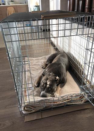 Крепкая клетка, переноска, вольер, будка для собак 92х63х70h