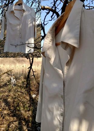 Строгая блуза