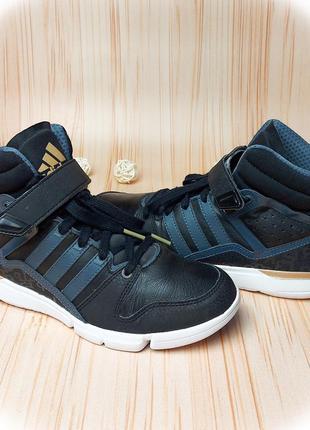 Хайтопы adidas, хайтопи, кроссовки адидас, кеды