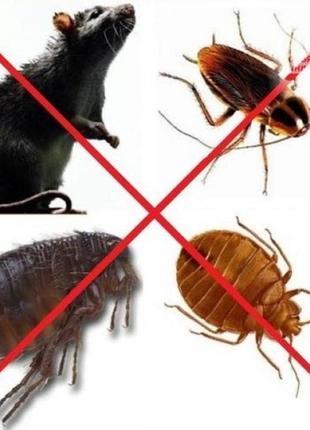 Уничтожение тараканов,блох,клопов,крыс и мышей.