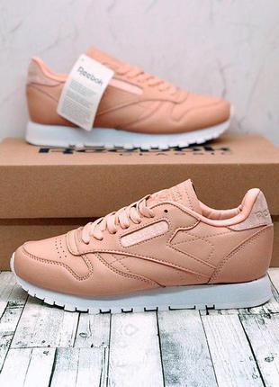Женские кожаные кроссовки reebok classic leather  pink/white😍 ...