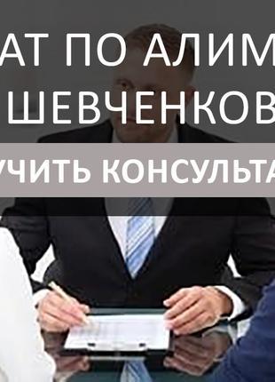 Адвокат по алиментам Киев Шевченковский, быстрое решение вопроса