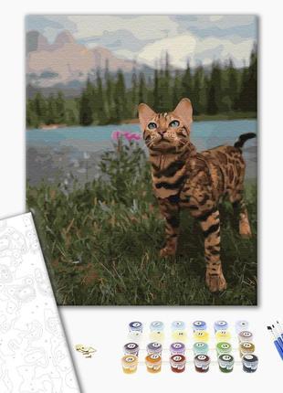Картина по номерам бенгальская кошка , бенгальская кошка , кар...