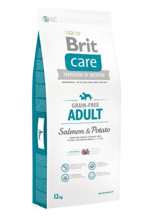 Акция! Сухой корм Brit Care GF Adult Salmon & Potato 12 кг