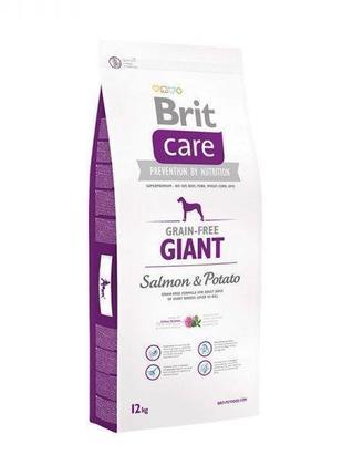Акция! Сухой корм Brit Care GF Giant Salmon & Potato 12 кг