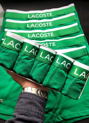 Мужское белье Lacoste