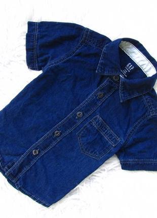 Стильная и качественная джинсовая рубашка с коротким рукавом gap