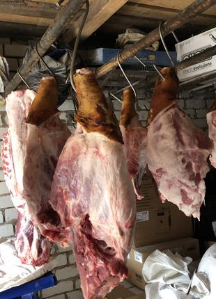 Мясо Свинины!!!