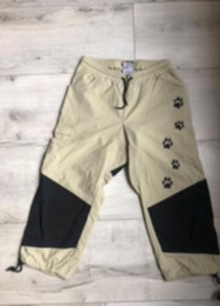 Штаны / брюки непродувайки Jack Wolfskin