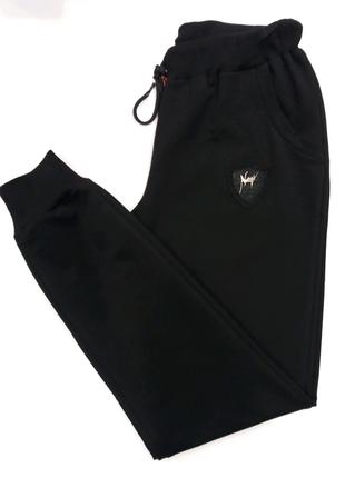 Спортивные штаны батал