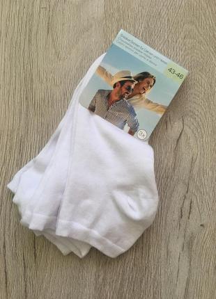 Классные мужские хлопковые носки c&a  германия.