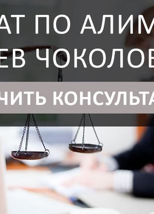 Адвокат по алиментам Киев Чоколовка, решить вопрос в сжатые сроки