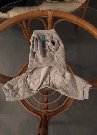 Одежда для маленьких собак чихуахуа