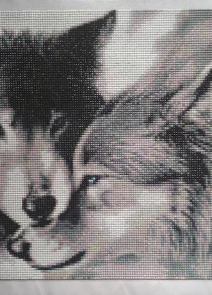 """""""Волки""""Уже готовая алмазная вышивка (мозаика) 40х30 см."""