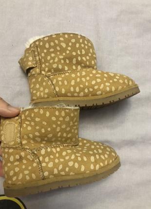Обувь Угги Zara 20 размер