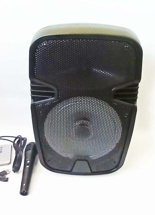 WF-801 Беспроводная портативная bluetooth колонка - чемодан