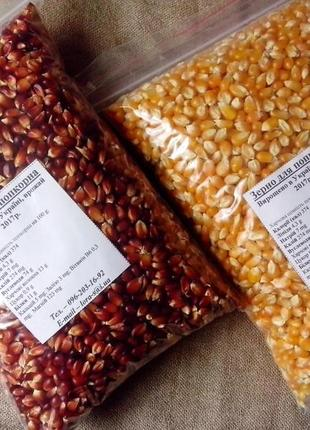 Домашнє зерно для попкорна Акція