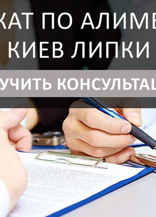 Адвокат по алиментам Киев Липки, первая консультация бесплатно