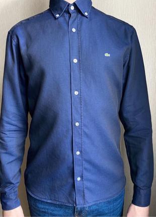Мужская темно-синяя рубашка Lacoste