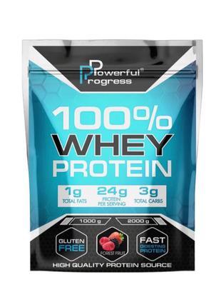 Протеїн 100% Whey Protein Powerful Progress, протеин Powerful ...