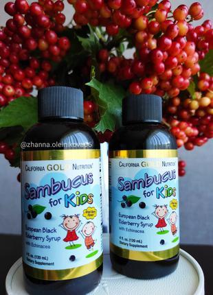 California Gold Nutrition, сироп бузины с эхинацеей для детей,120