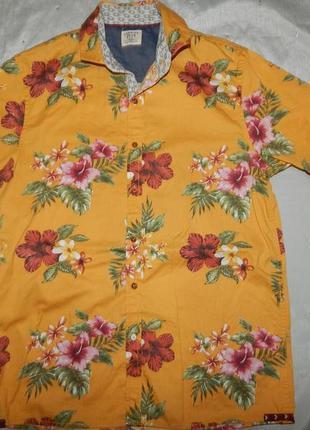 Рубашка гавайка на мальчика 14 лет 164см на подростка можно xs