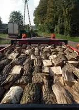 Дрова дуб акация граб